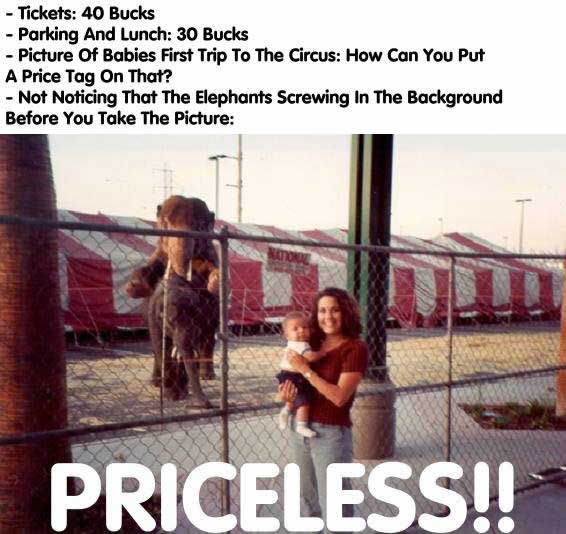 priceless_-_elephants_sex_01